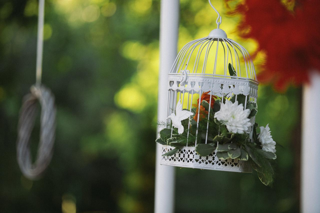 fotograf nunta craiova dragos stoenica daiana si cosmin 6364